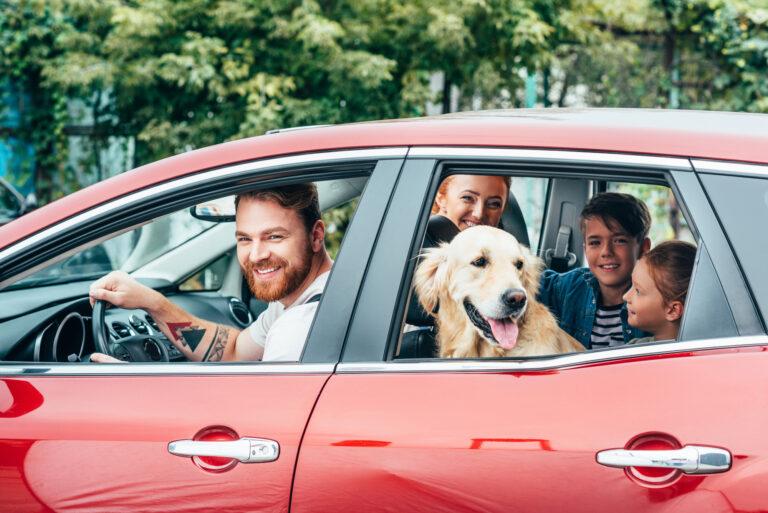 Check up auto prima di partire per le vacanze